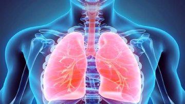 دستگاه+تنفسی