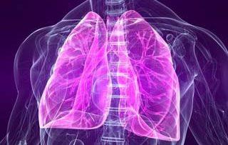 ریه-تنفس