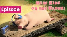 Masha-and-the-Bear-–-👶🐷New-Kids-on-the-Block-🐷👶-Episode-69