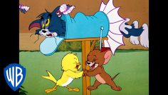 Tom-Jerry36