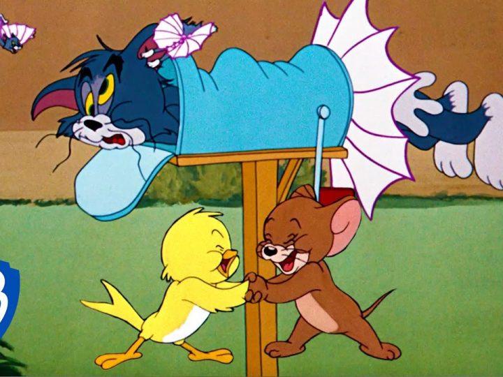 Tom-Jerry36