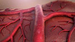 koronavirus-genclerde-damar-hasarina-neden-oluyor_5162