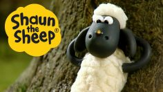 Shaun-the-Sheep8