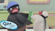 Pingu-And-Pinga-Have-A-Tug-Of-War